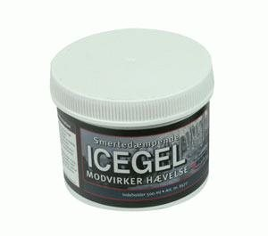 Aserve Isgel 500 ml
